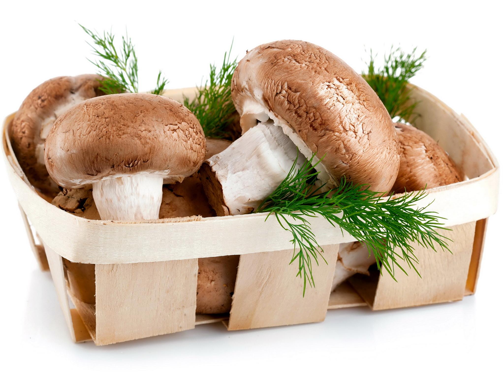 можно ли есть грибы при похудении шампиньоны